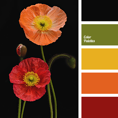 Color Of Poppies Color Palette Ideas