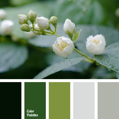 light grey color