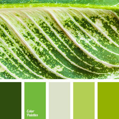 lime and green colors