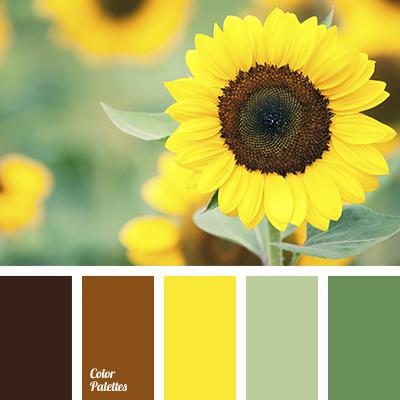 Color Of Sunflower Color Palette Ideas
