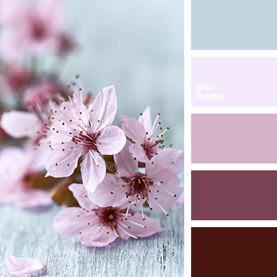 Color of raspberry color palette ideas - Pink match with what color ...