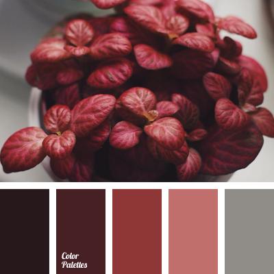 maroon color shades | Color Palette Ideas