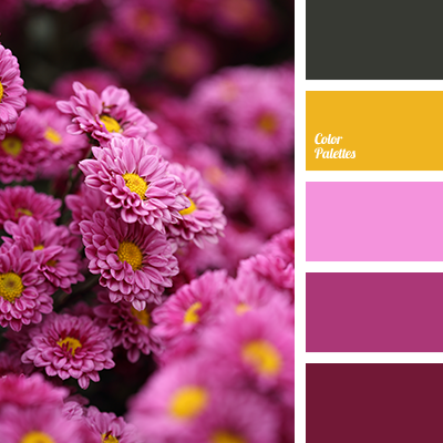http://colorpalettes.net/wp-content/uploads/2016/05/color-palette-2798.png