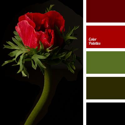 alizarin red color