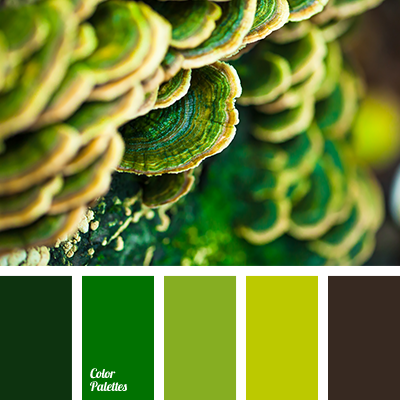 Color Palette 2807