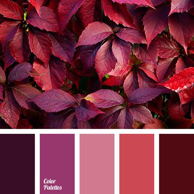 lilac shades