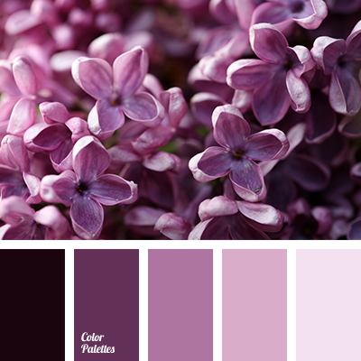 http://colorpalettes.net/wp-content/uploads/2016/05/color-palette-2830.png