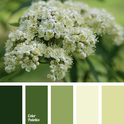 http://colorpalettes.net/wp-content/uploads/2016/05/color-palette-2835.png