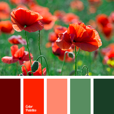 Color Palette 2878