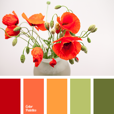 red poppy color