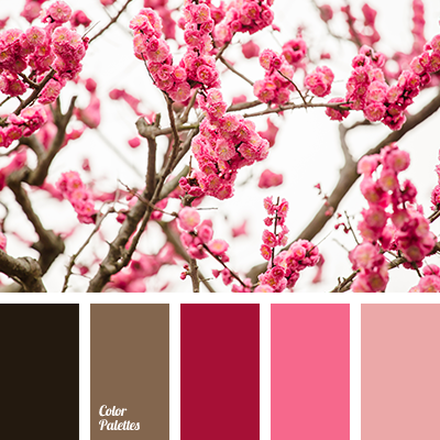 Shades of pink color palette ideas Colors that go with rose pink