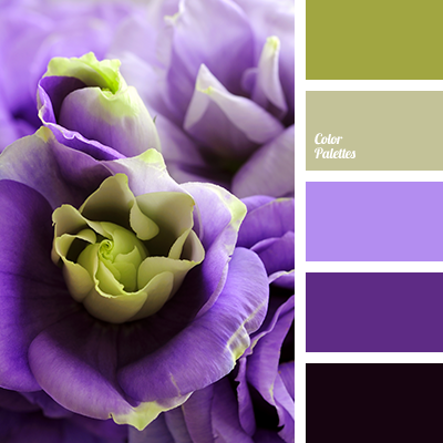 Color Palette 2865