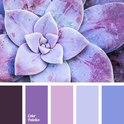 Color Palette 2892