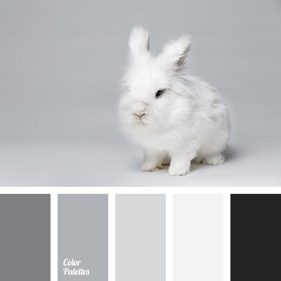Monochrome Gray Color Palette Color Palette Ideas