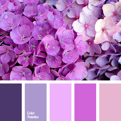 http://colorpalettes.net/wp-content/uploads/2016/08/color-palette-2963.png