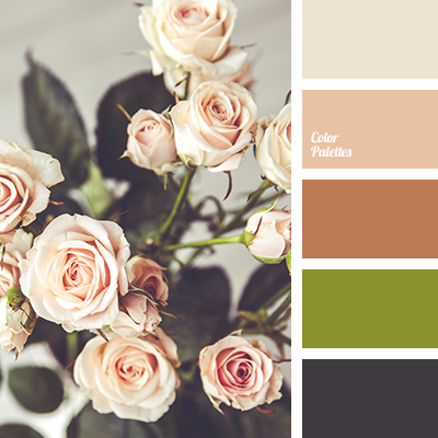 http://colorpalettes.net/wp-content/uploads/2016/08/color-palette-2985.png