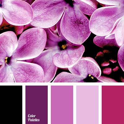 liac color