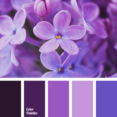 http://colorpalettes.net/wp-content/uploads/2016/09/color-palette-2969.png