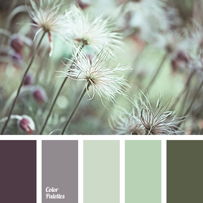 Forest Taupe Paint Color