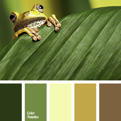 swamp color