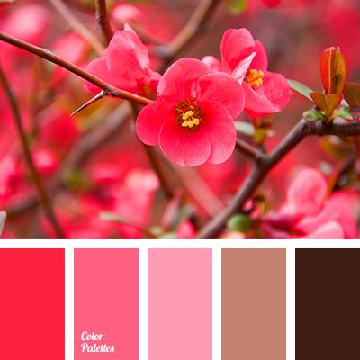 pale pink color