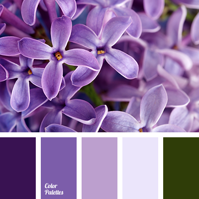 light purple color