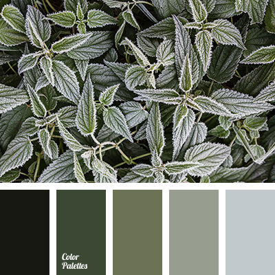 light green color