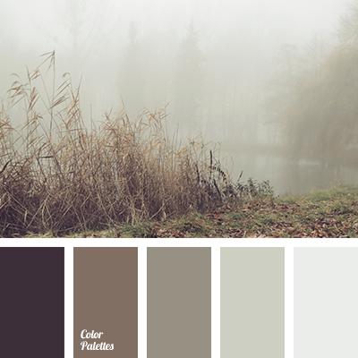 Light Grey Color Color Palette Ideas