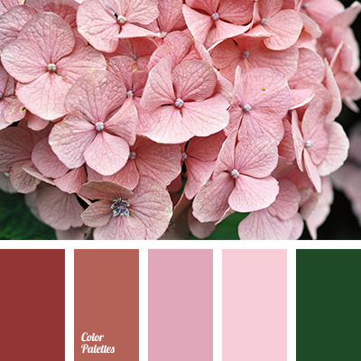 http://colorpalettes.net/wp-content/uploads/2016/12/color-palette-3148.png