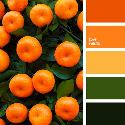 orange color