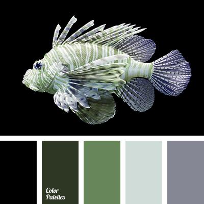 white-gray color