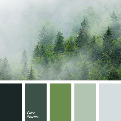 Dark Grey Color Color Palette Ideas