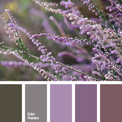 Color Palette 3191