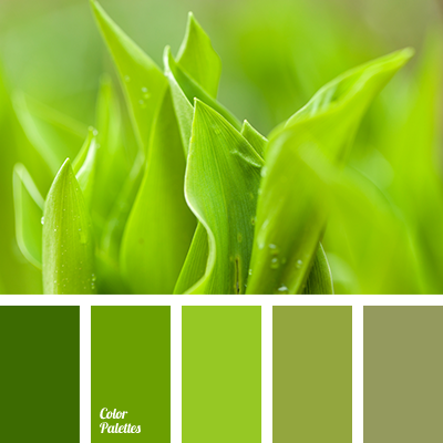 What Green Paint For Photo Edit