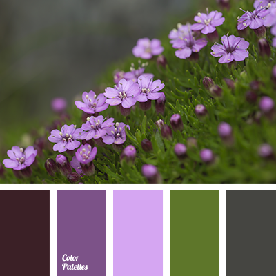 http://colorpalettes.net/wp-content/uploads/2017/01/color-palette-3212.png