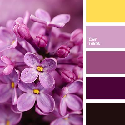 Burgundy Color Color Palette Ideas