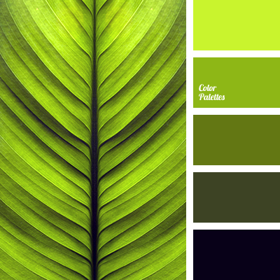 Color Palette 3242