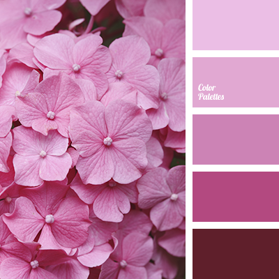 http://colorpalettes.net/wp-content/uploads/2017/03/color-palette-3245.png