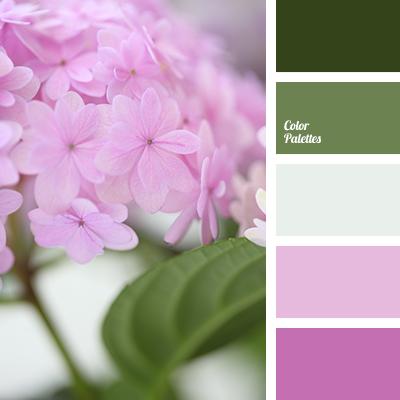 lilac color