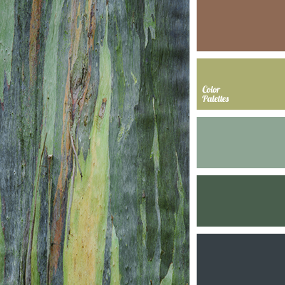 color of forest color palette ideas