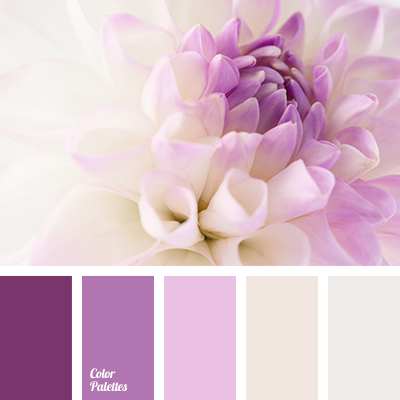 Lilac Color Great Pictures