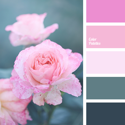 Color Palette 3274