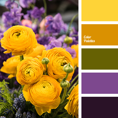 Color Palette 3302