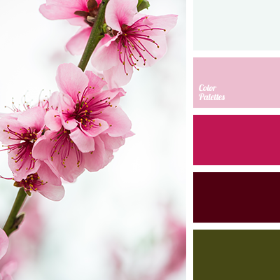 Color palette for spring