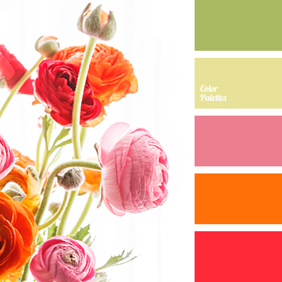 Color Palette 3383