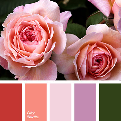 Color solution for home