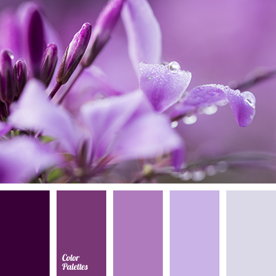 Color Palette 3413 Dark Lilac Purple