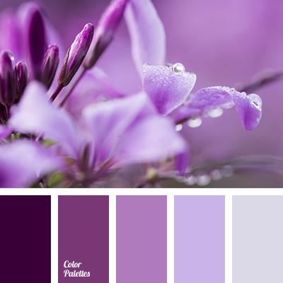 Violet shades