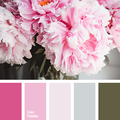 Color of pink peonies