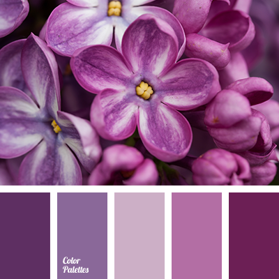 Cold shades of purple